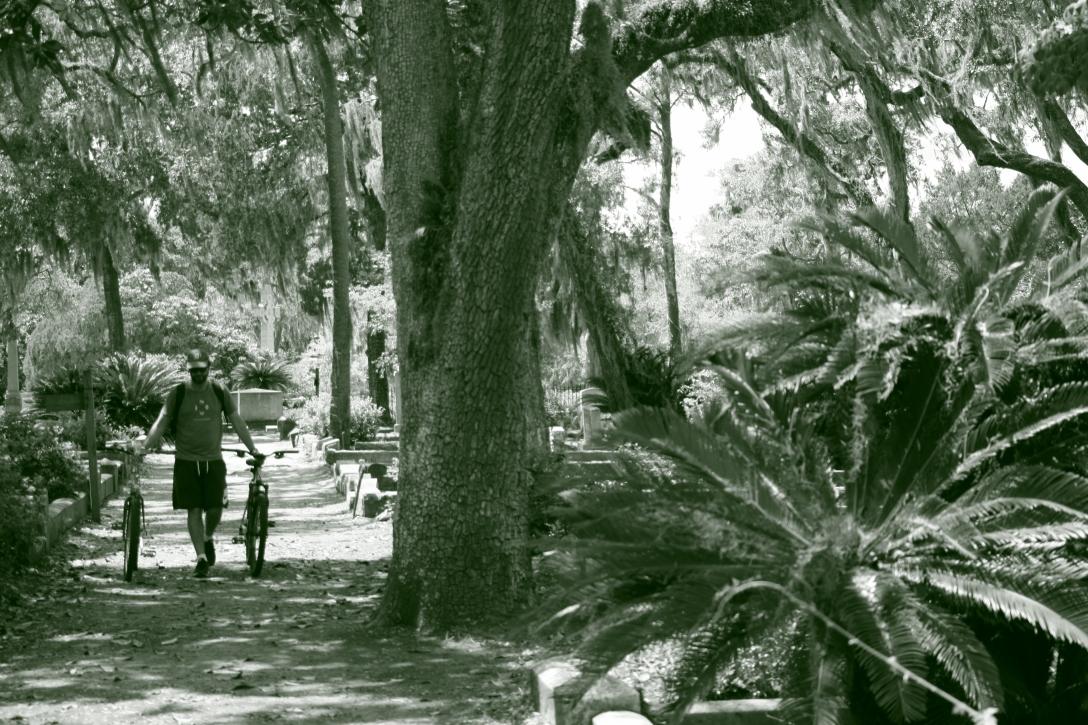 Cycle Bonaventure Cemetery